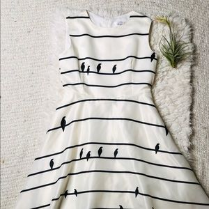 Chic Wish Sing a Love Song Bird Printed Dress